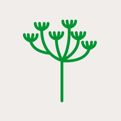 Icône plantes et insectes nuisibles