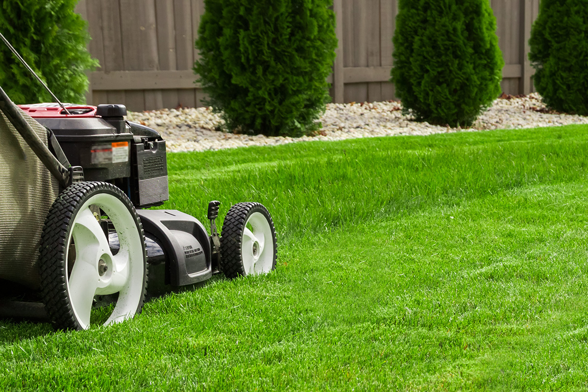 Tonte d'une belle pelouse verte avec une tondeuse
