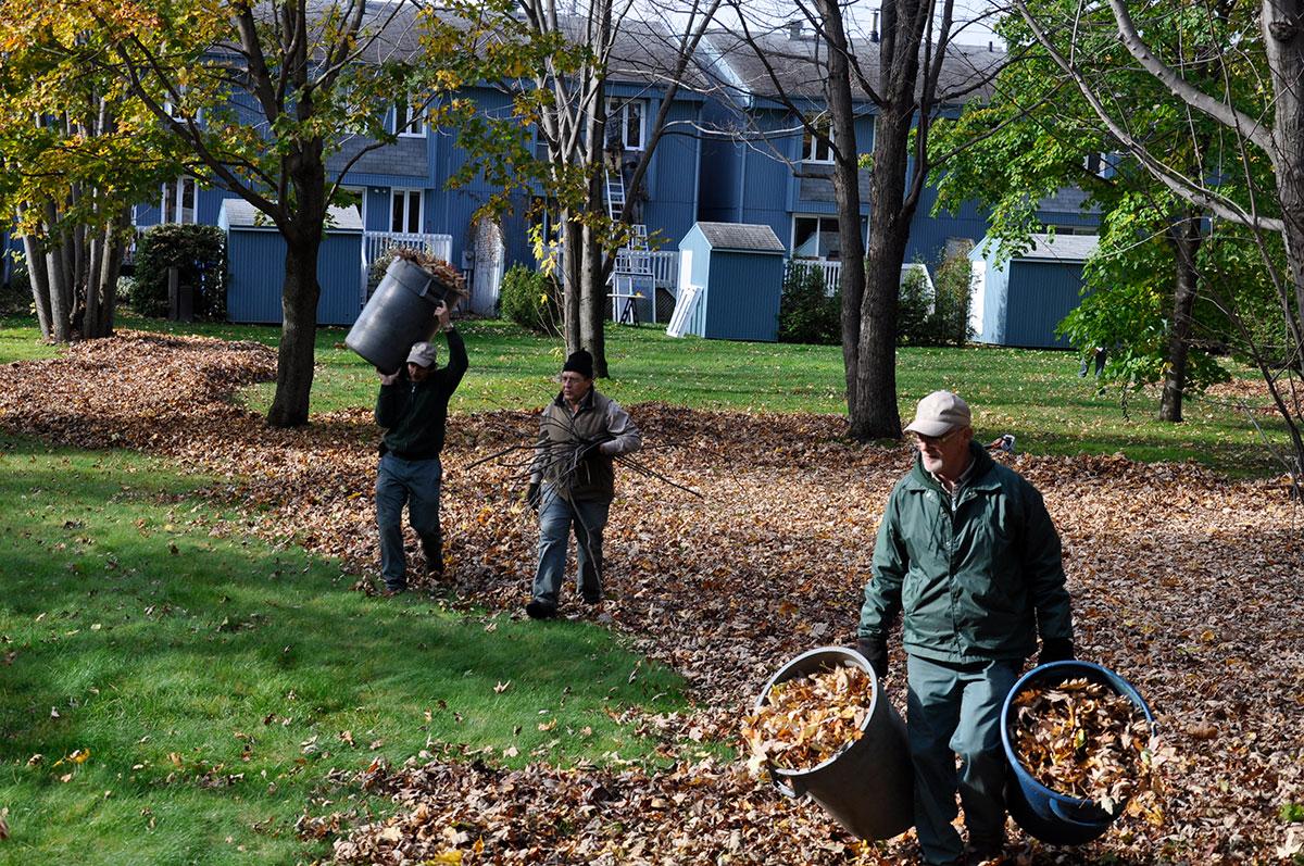 Fermeture et nettoyage de terrain, gens ramassant feuilles d'arbres à l'automne