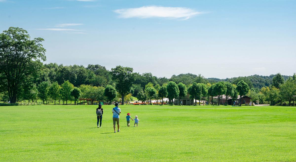 Entretien parcs municipaux et villes